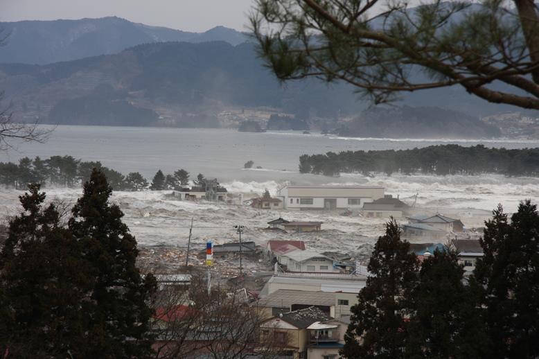 陸前高田市取材レポート 「天命」 東京いのちのポータルサイト